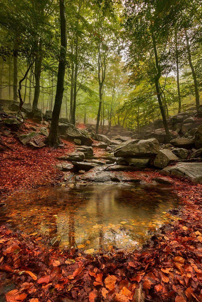 Validation/WinterFall/autumn7.jpg