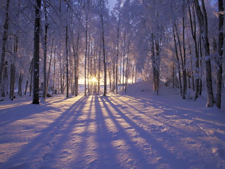 Validation/WinterFall/winter1.jpg