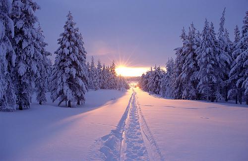 Validation/WinterFall/winter2.jpg