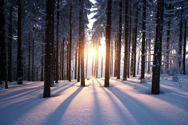 Validation/WinterFall/winter3.jpg