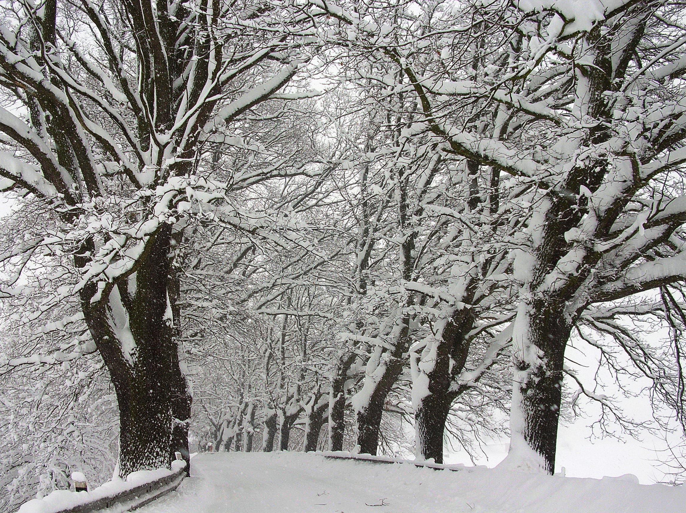 Validation/WinterFall/winter7.jpg