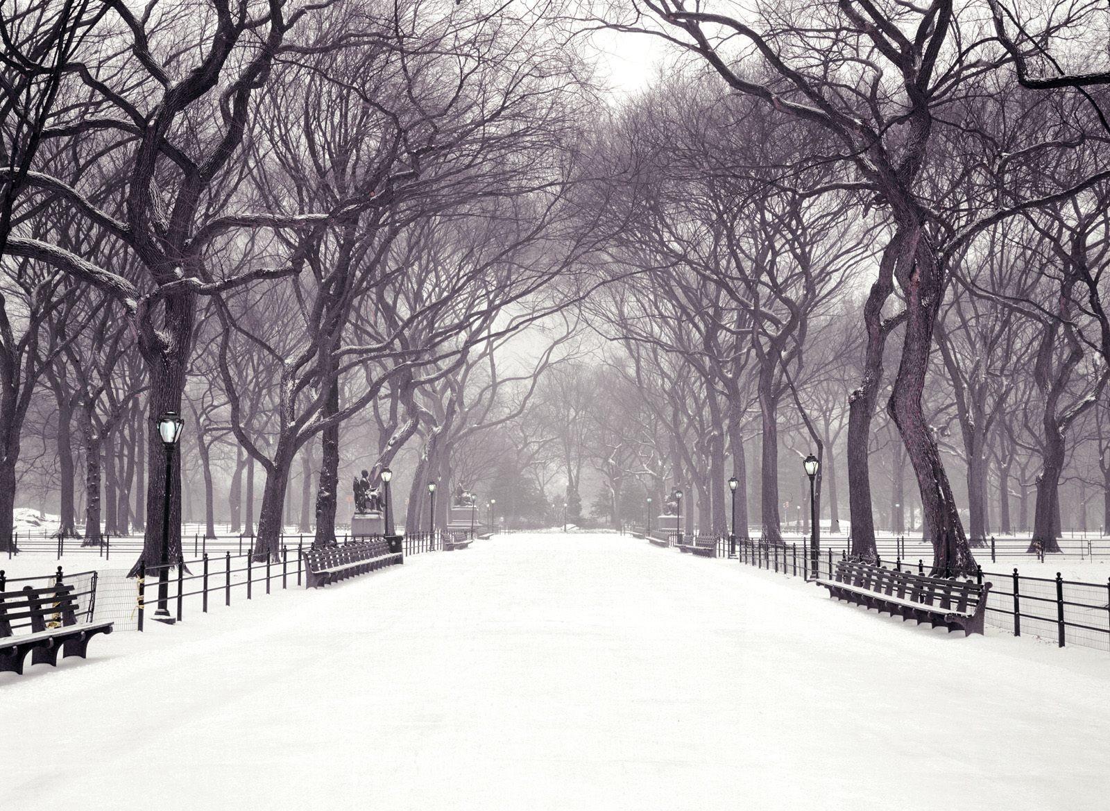 Validation/WinterFall/winter8.jpg
